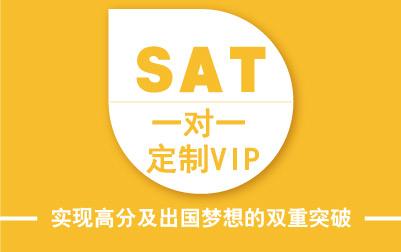 SAT1对1定制VIP班