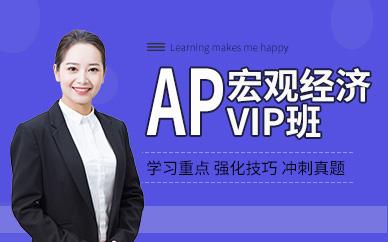 AP宏观经济VIP小班