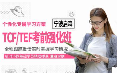 TCF/TEF考前强化班
