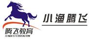 腾飞教育logo